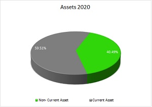 Asset_2020
